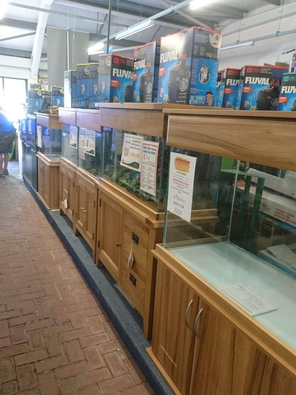 Maidenhead Aquatics Crawley - store  | Photo 2 of 3 | Address: Squires garden centre, Horsham Rd, Crawley RH11 8PL, UK | Phone: 01293 538256