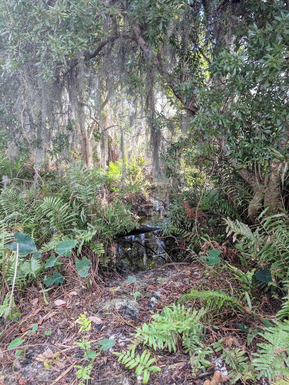 Bird Island - park    Photo 4 of 10   Address: 3 Butler St, Windermere, FL 34786, USA   Phone: (407) 876-2563