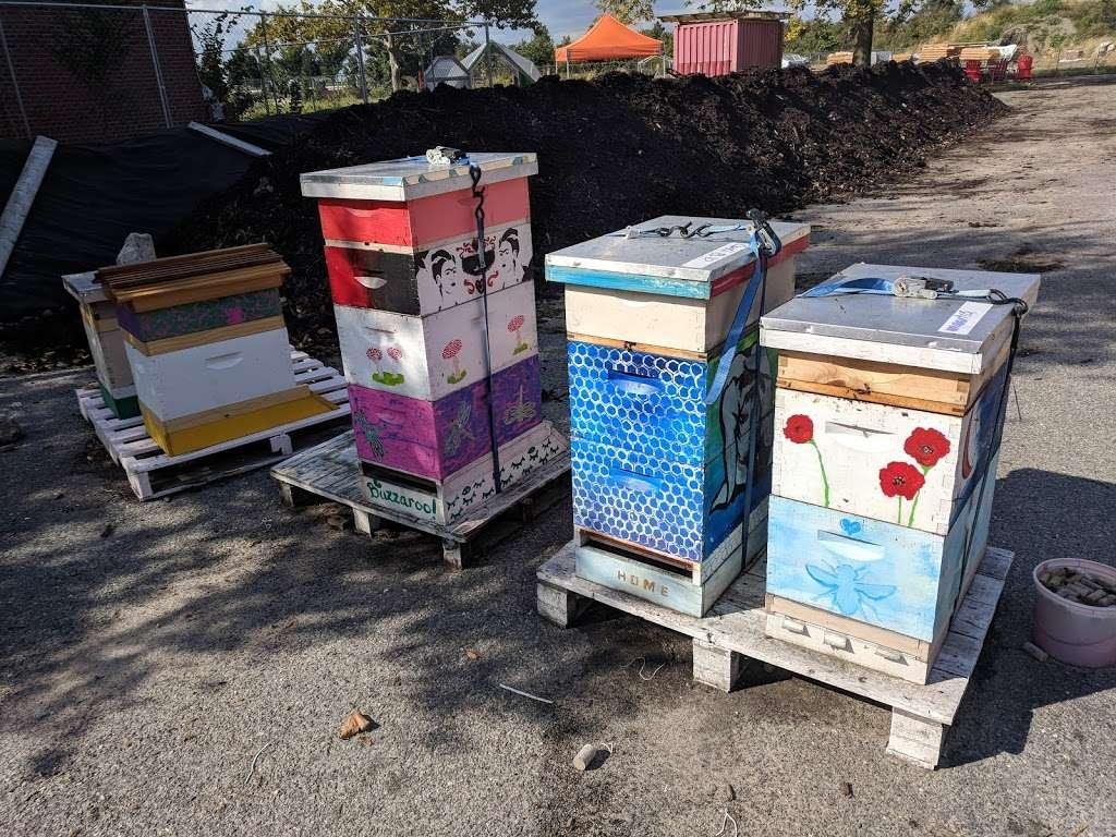 Governors Island Teaching Garden - park  | Photo 9 of 10 | Address: 778 Enright Rd, New York, NY 10004, USA | Phone: (212) 788-7900