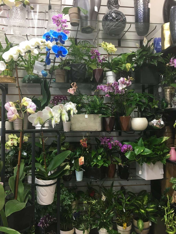Yesenias Flowers - florist  | Photo 8 of 10 | Address: 1537 Castle Hill Ave, Bronx, NY 10462, USA | Phone: (347) 657-0022