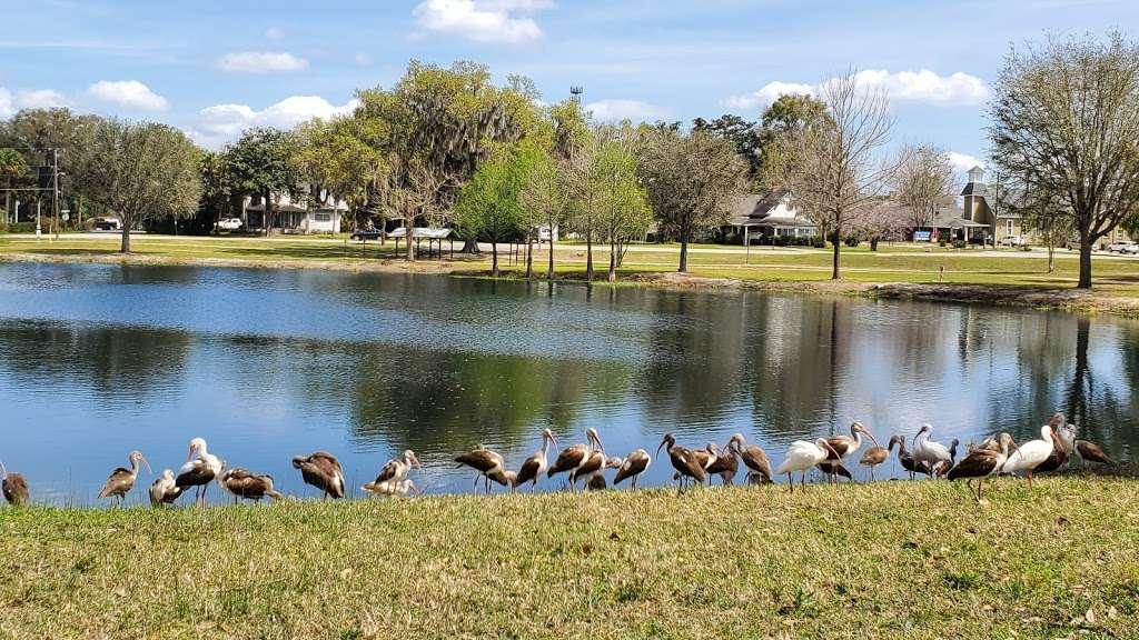 Lake Lillian - park    Photo 1 of 8   Address: SE Robinson Rd, Belleview, FL 34420, USA   Phone: (352) 245-7021