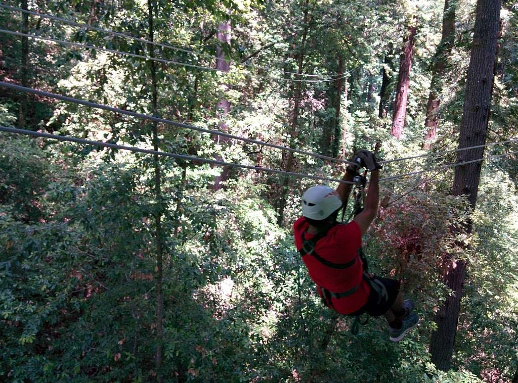 Redwood Canopy Tour - travel agency  | Photo 4 of 10 | Address: 17 Conference Dr, Felton, CA 95014, USA | Phone: (831) 430-4357