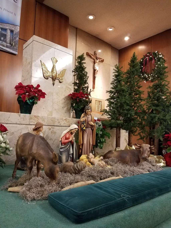 St. Theresa Catholic Church - church    Photo 8 of 10   Address: 6622 Haskell St, Houston, TX 77007, USA   Phone: (713) 869-3783