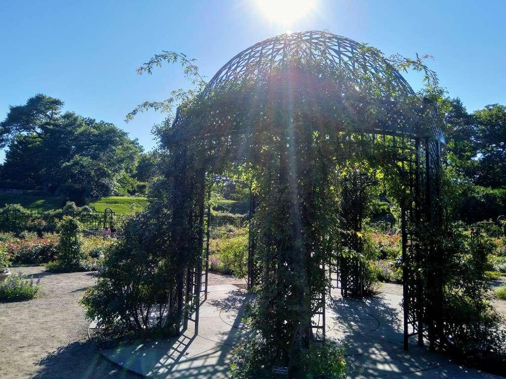 Rockefeller Rose Garden - park  | Photo 6 of 10 | Address: Bronx River Pkwy, Bronx, NY 10467, USA | Phone: (718) 817-8700