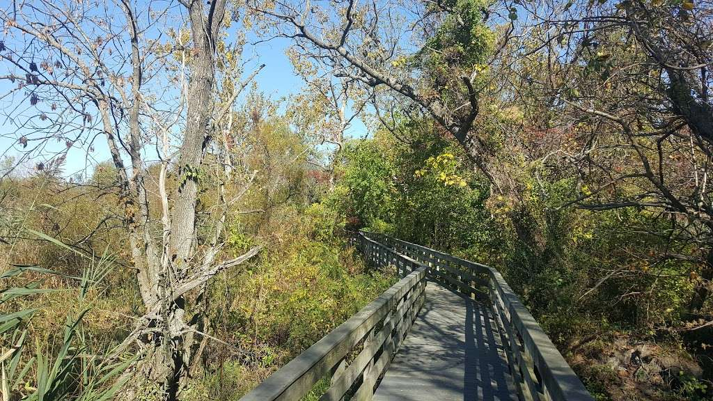 Heritage Park Boardwalk - park    Photo 7 of 10   Address: Cove Rd, Pennsauken Township, NJ 08110, USA
