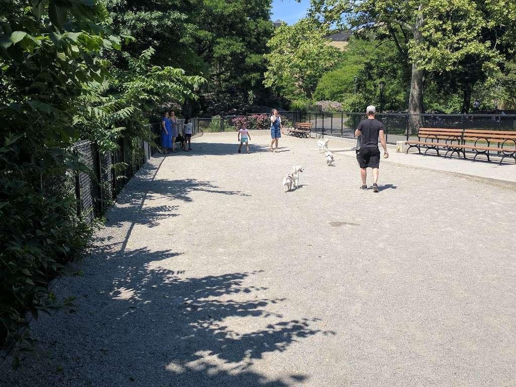 J. Hood Wright Park Dog Run - park  | Photo 1 of 2 | Address: J, Hood Wright Park, New York, NY 10033, USA