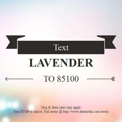 Lavender Massage Spa - spa  | Photo 5 of 5 | Address: 1529 E Interstate 30 #101, Garland, TX 75043, USA | Phone: (469) 814-9282