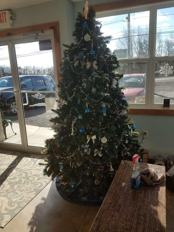 Blue Iris Day Spa & Salon - spa  | Photo 3 of 7 | Address: 879 W Pulaski Hwy, Elkton, MD 21921, USA | Phone: (410) 287-1331