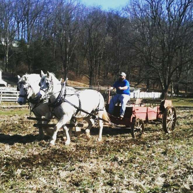 Landis Valley Farm - museum  | Photo 2 of 10 | Address: 2451 Kissel Hill Rd, Lancaster, PA 17601, USA | Phone: (717) 569-0401