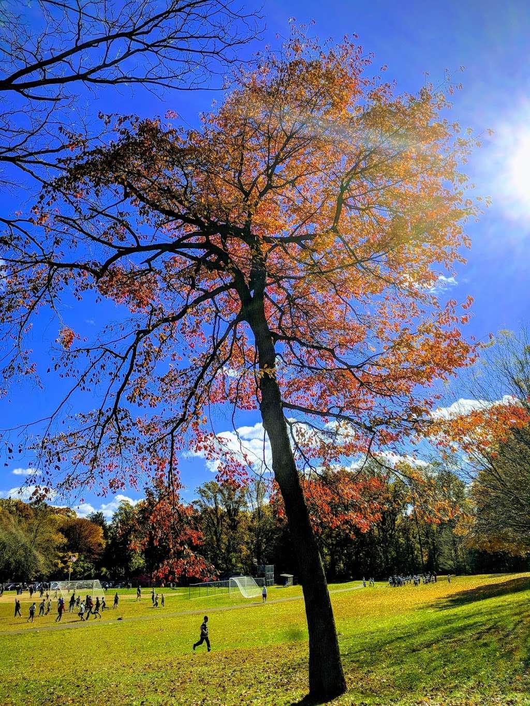 Crowell Park - park  | Photo 7 of 10 | Address: Springfield, PA 19064, USA