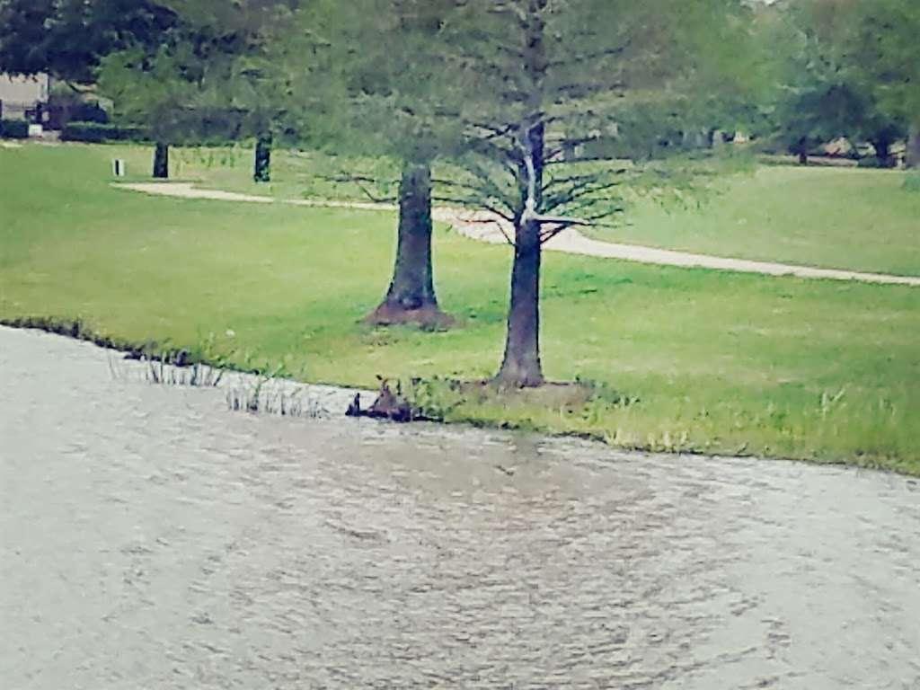 Telfair Community Park - park  | Photo 2 of 10 | Address: Chatham Ave, Sugar Land, TX 77479, USA