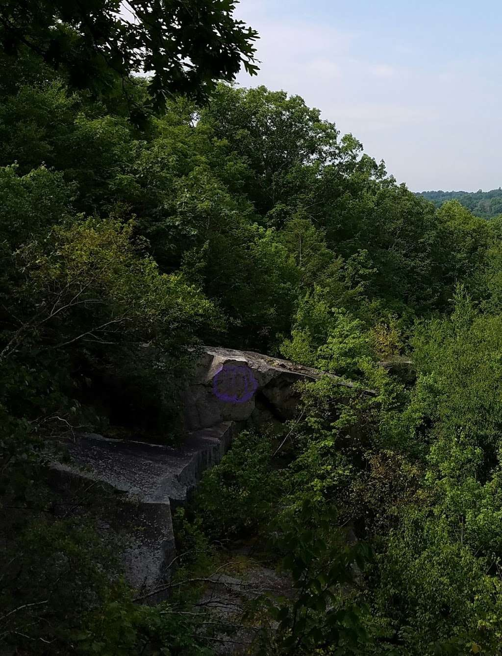 Sylvan Glen Nature Preserve - park  | Photo 10 of 10 | Address: Hunterbrook Rd, Mohegan Lake, NY 10547, USA | Phone: (914) 245-4650