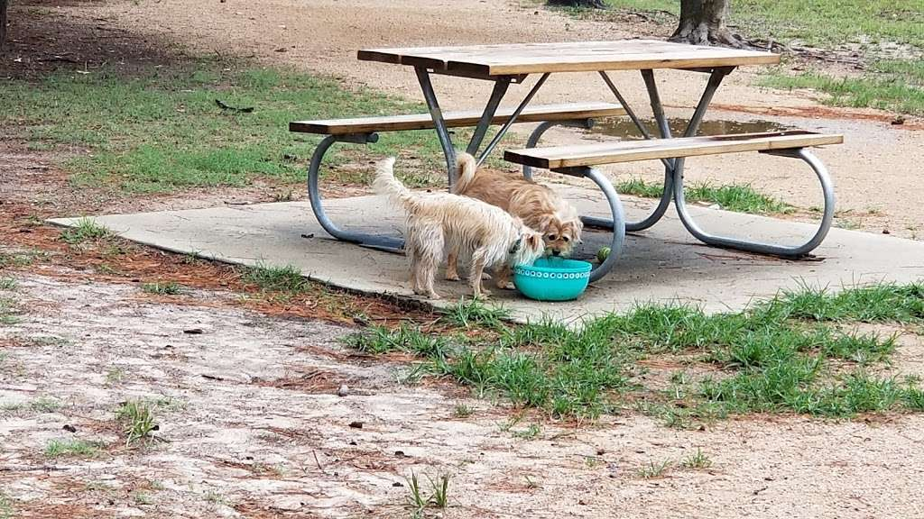 Bibi & Mini-Me Bush Dog Park - park  | Photo 6 of 10 | Address: 4129 Spring Creek Dr, Spring, TX 77373, USA | Phone: (281) 353-8100