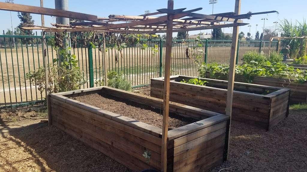 Belvedere Park Community Garden - park  | Photo 4 of 9 | Address: 337 N Mednik Ave, East Los Angeles, CA 90022, USA