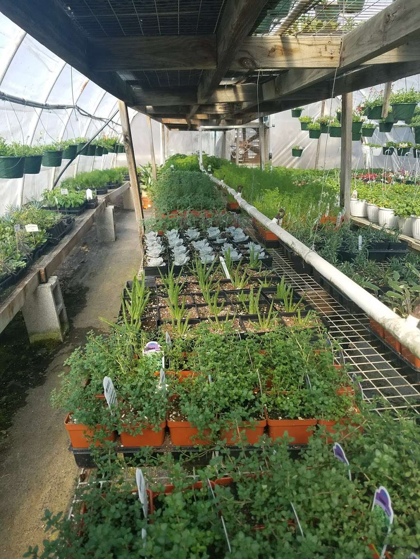 Hueters Greenhouse - store  | Photo 9 of 9 | Address: 3465 Deininger Rd, York, PA 17406, USA | Phone: (717) 755-5629
