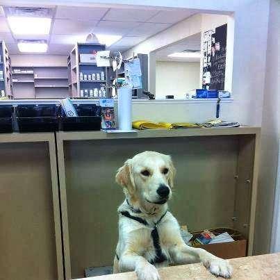 Five Points Pharmacy and Wellness - pharmacy  | Photo 2 of 10 | Address: 1108 Lake Dr, Cocoa, FL 32922, USA | Phone: (321) 806-3951