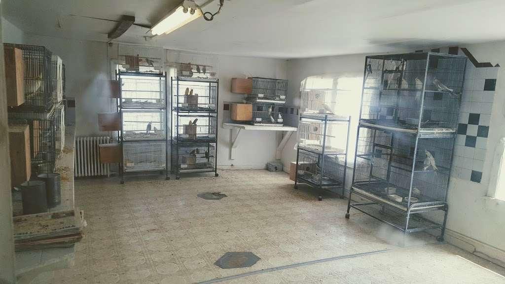 Stewarts Bird Farm - pet store  | Photo 1 of 10 | Address: 1560 Old Forty Foot Rd, Harleysville, PA 19438, USA | Phone: (215) 362-1123