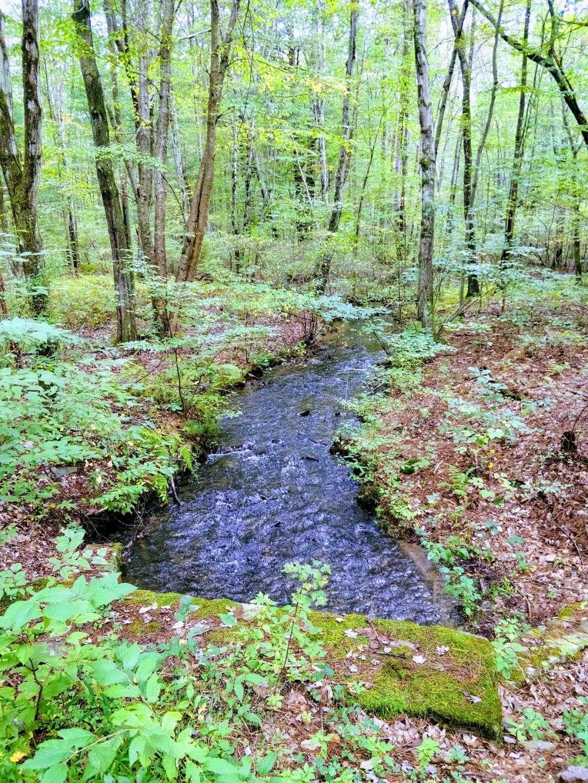 Moon Lake State Forest Recreation Area - park  | Photo 3 of 10 | Address: Hunlock Creek, PA 18621, USA