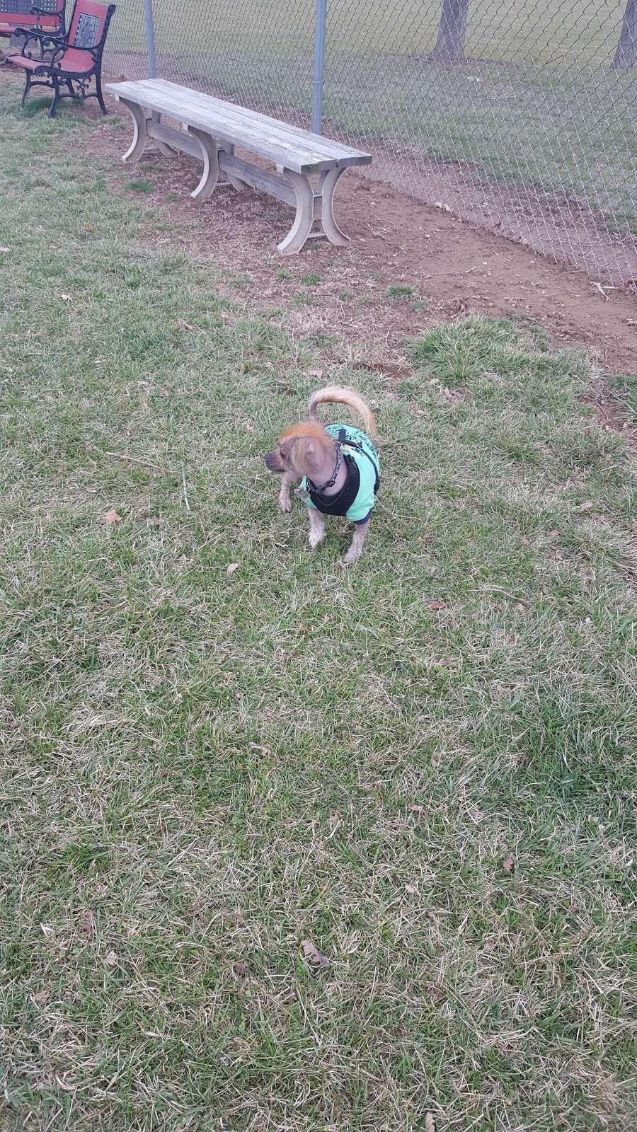 Kutztown Dog Park - park  | Photo 9 of 10 | Address: 325 S Laurel St, Kutztown, PA 19530, USA