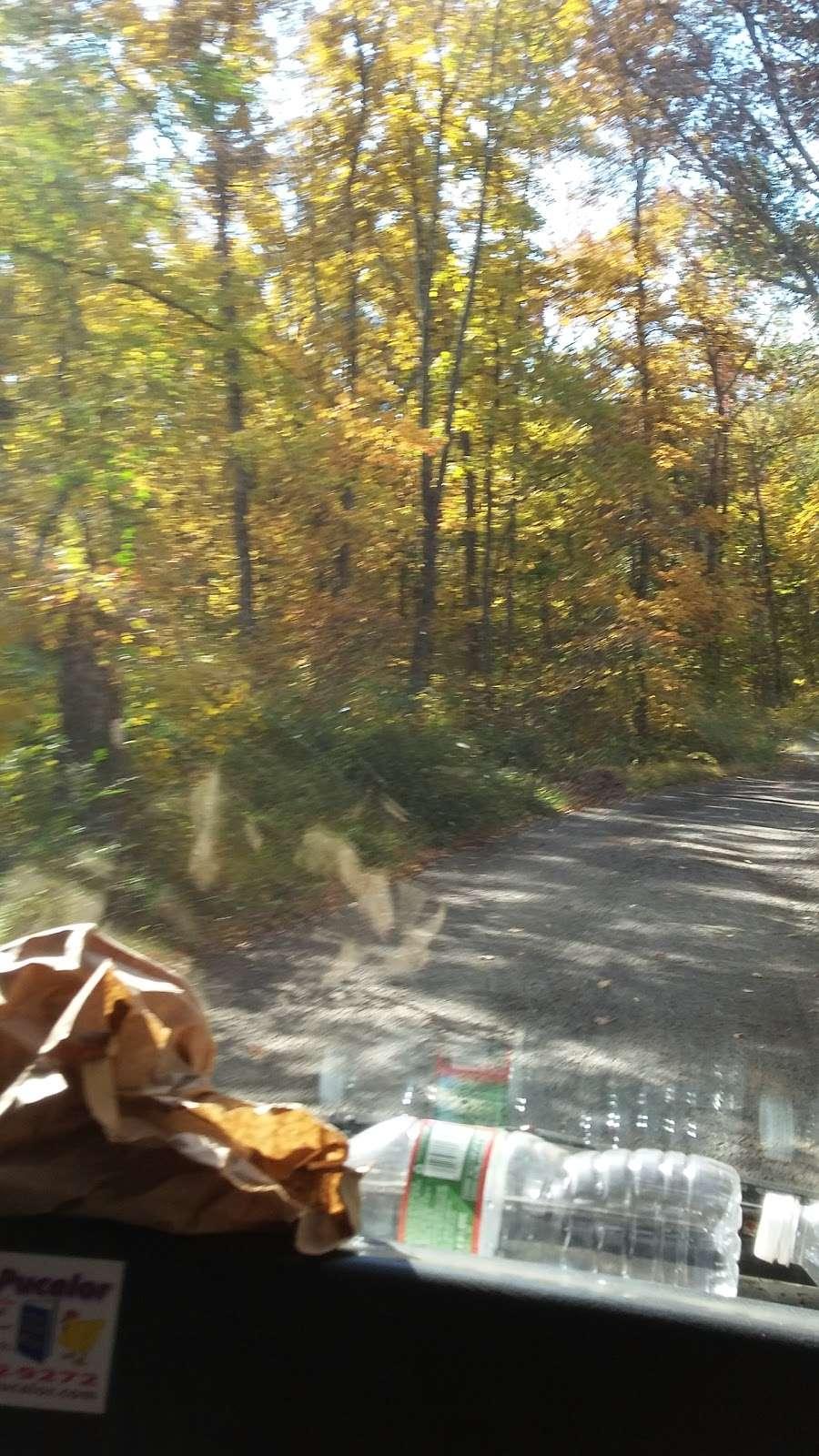 Morris County - park  | Photo 9 of 10 | Address: 3-85 Old Waterloo Rd, Budd Lake, NJ 07828, USA