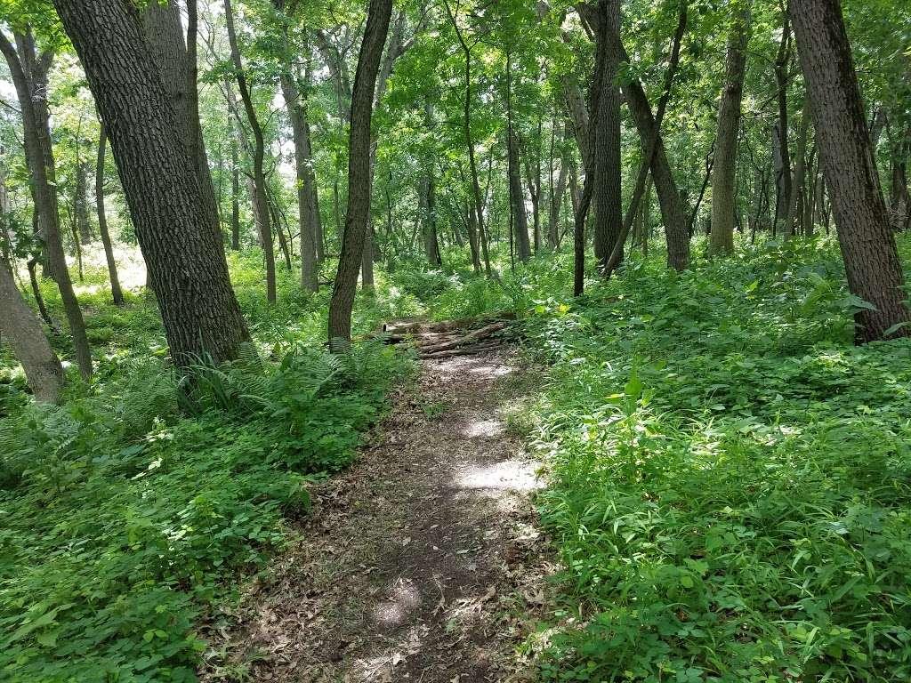 Wampum Lake Woods - park  | Photo 5 of 10 | Address: 598 Thornton Lansing Rd, Thornton, IL 60476, USA | Phone: 0000000000