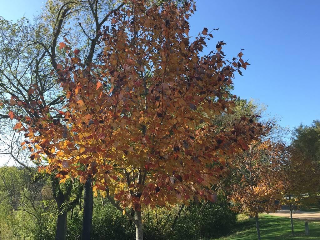 Baldwin Park - park  | Photo 5 of 9 | Address: 400 Keith Rd, Circle Pines, MN 55014, USA | Phone: (763) 231-2611