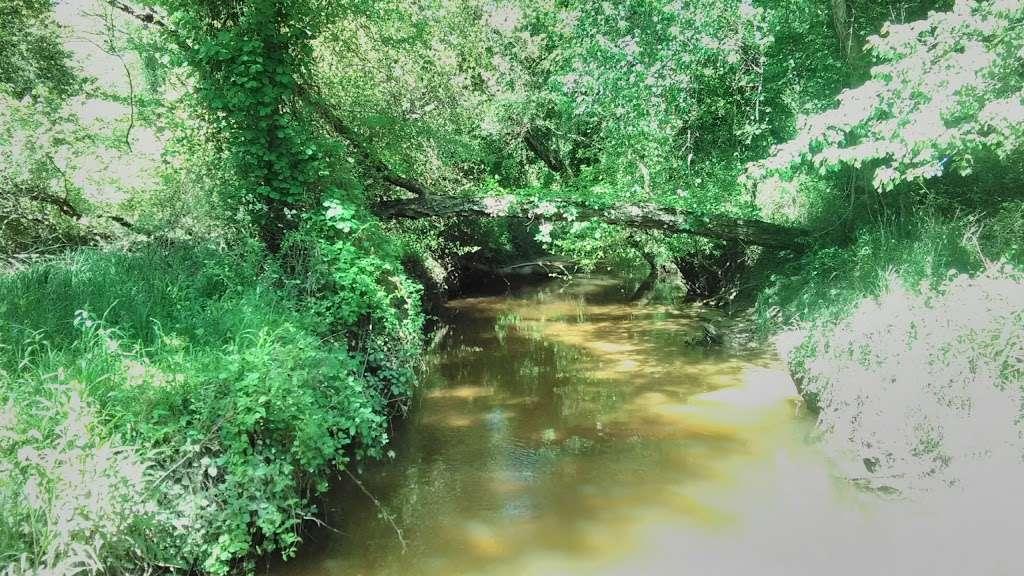 Severn Run NEA Trails - park  | Photo 4 of 8 | Address: 1027-1055 Dicus Mill Rd, Millersville, MD 21108, USA