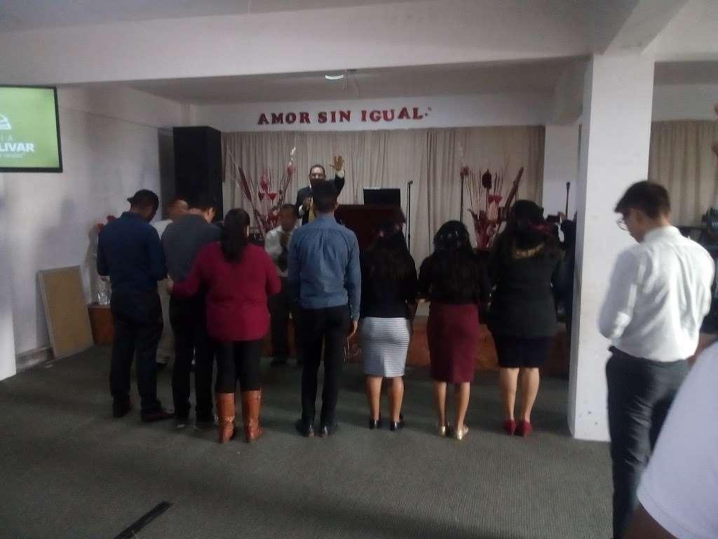 "Asamblea Apostolica ""Monte Olivar"" - church    Photo 2 of 3   Address: Monte Trichi Norte 4850, Las Cumbres, 22545 Tijuana, B.C., Mexico   Phone: 664 440 7654"