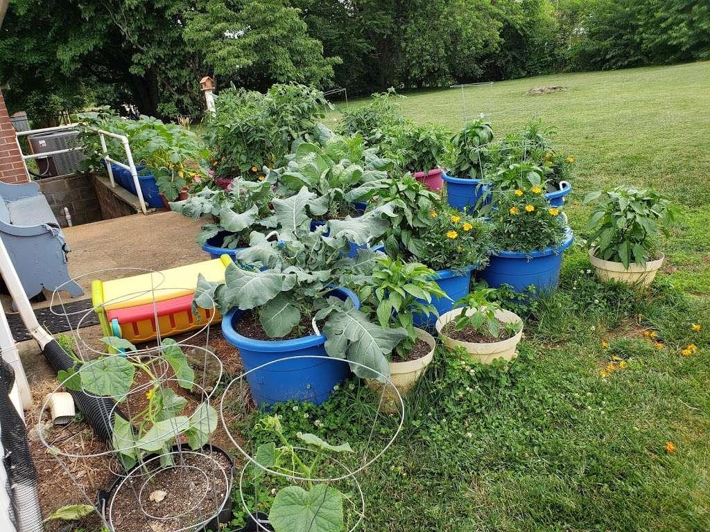 Creekside Nursery Produce