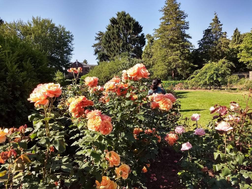 Woodland Park Rose Garden - park  | Photo 5 of 9 | Address: 750 N 50th St, Seattle, WA 98103, USA | Phone: (206) 684-4075