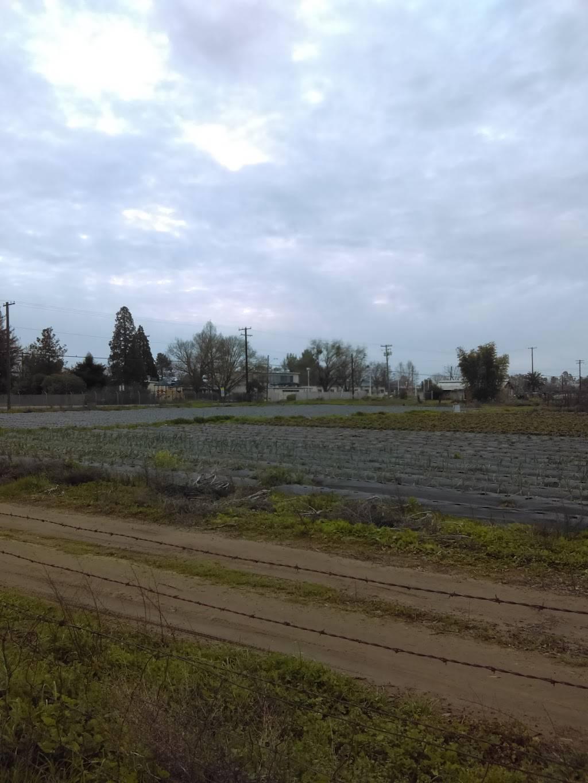 Sierra Enterprise Elementary - school    Photo 3 of 3   Address: 9115 Fruitridge Rd, Sacramento, CA 95826, USA   Phone: (916) 381-2767