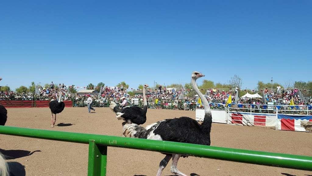 Tumbleweed Ranch - museum  | Photo 2 of 10 | Address: 2250 S McQueen Rd, Chandler, AZ 85286, USA | Phone: (480) 782-2717