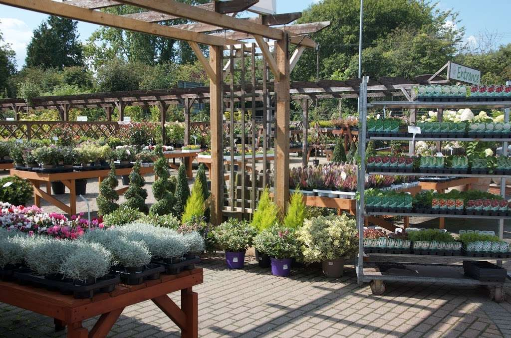 Greenacres - store  | Photo 7 of 10 | Address: Borough Green Road, Ightham, Sevenoaks TN15 9HS, UK | Phone: 01732 884726