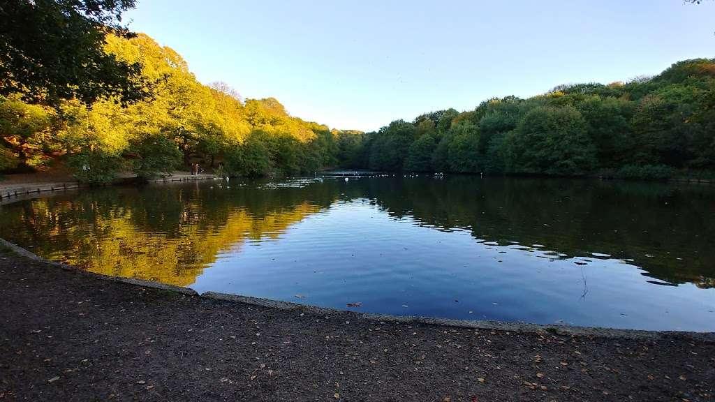 Queensmere Pond, Wimbledon Common - park  | Photo 9 of 10 | Address: Windmill Rd, Wimbledon, London SW19 5NR, UK | Phone: 020 8788 7655