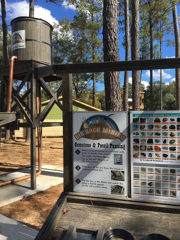 Gator Bayou Adventure Park - amusement park  | Photo 10 of 10 | Address: 23211 TX-242, New Caney, TX 77357, USA | Phone: (832) 509-1556