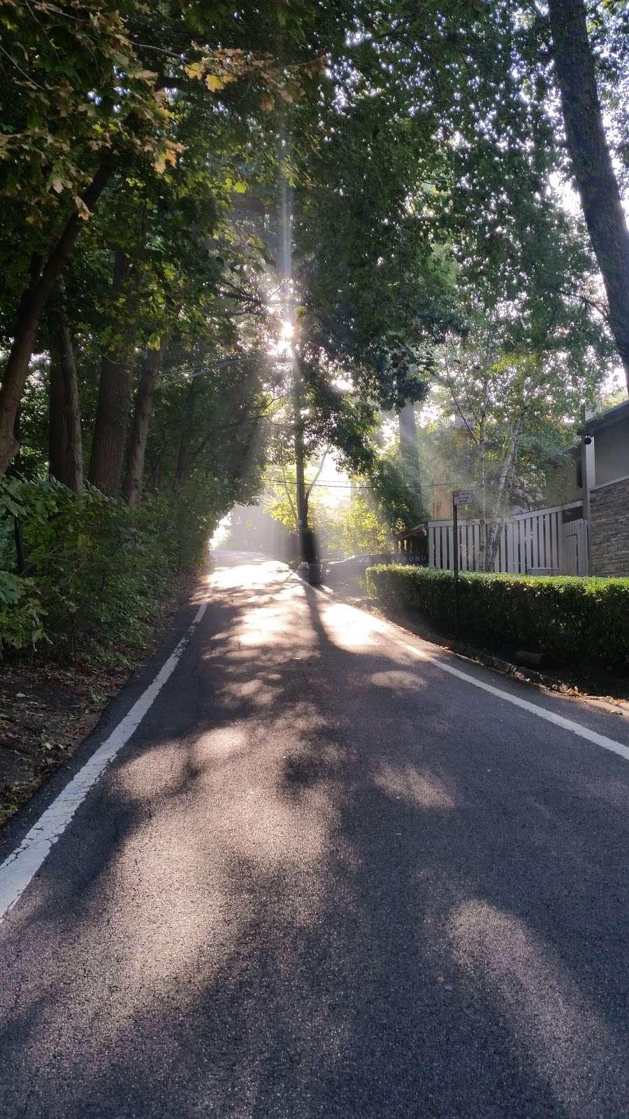 Raoul Wallenberg Forest - park  | Photo 3 of 6 | Address: Douglas Ave, Bronx, NY 10463, USA | Phone: (212) 639-9675