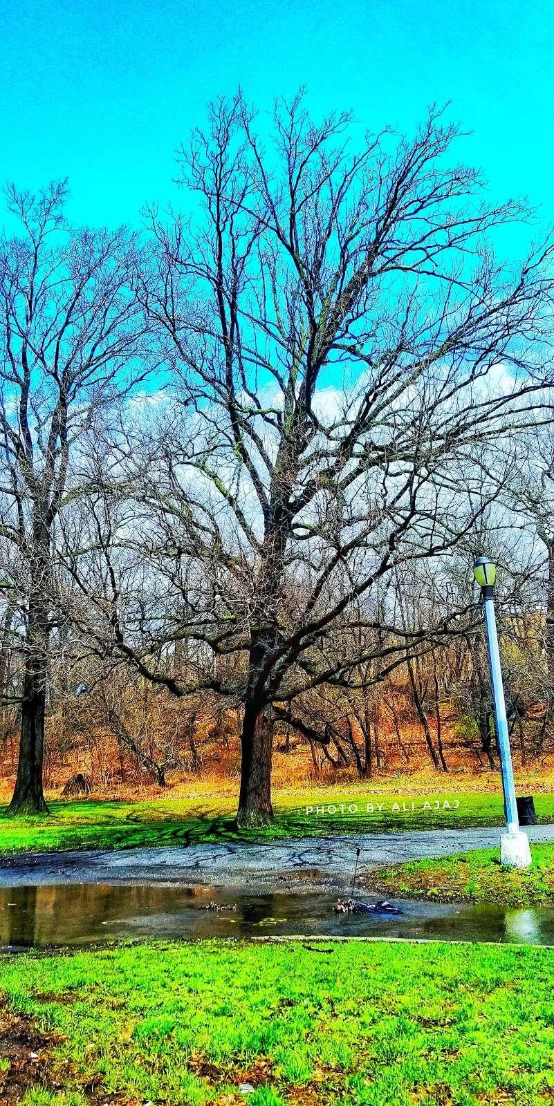 Jerome Park - park  | Photo 10 of 10 | Address: Goulden Ave, Bronx, NY 10463, USA | Phone: (212) 639-9675