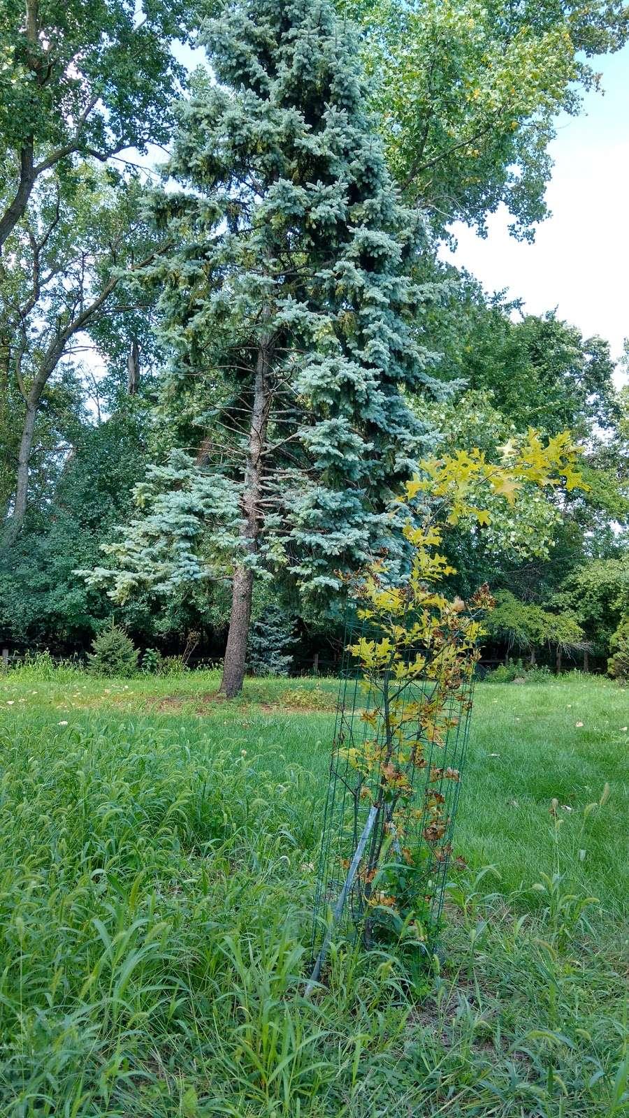 Triton College Botanical Garden - park  | Photo 9 of 10 | Address: 2000 5th Ave, River Grove, IL 60171, USA | Phone: (708) 456-0300