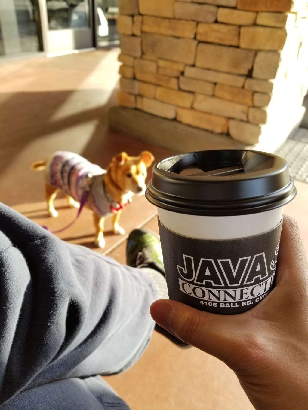 Java Connection - cafe  | Photo 2 of 10 | Address: 4105 Ball Rd, Cypress, CA 90630, USA | Phone: (714) 484-9221