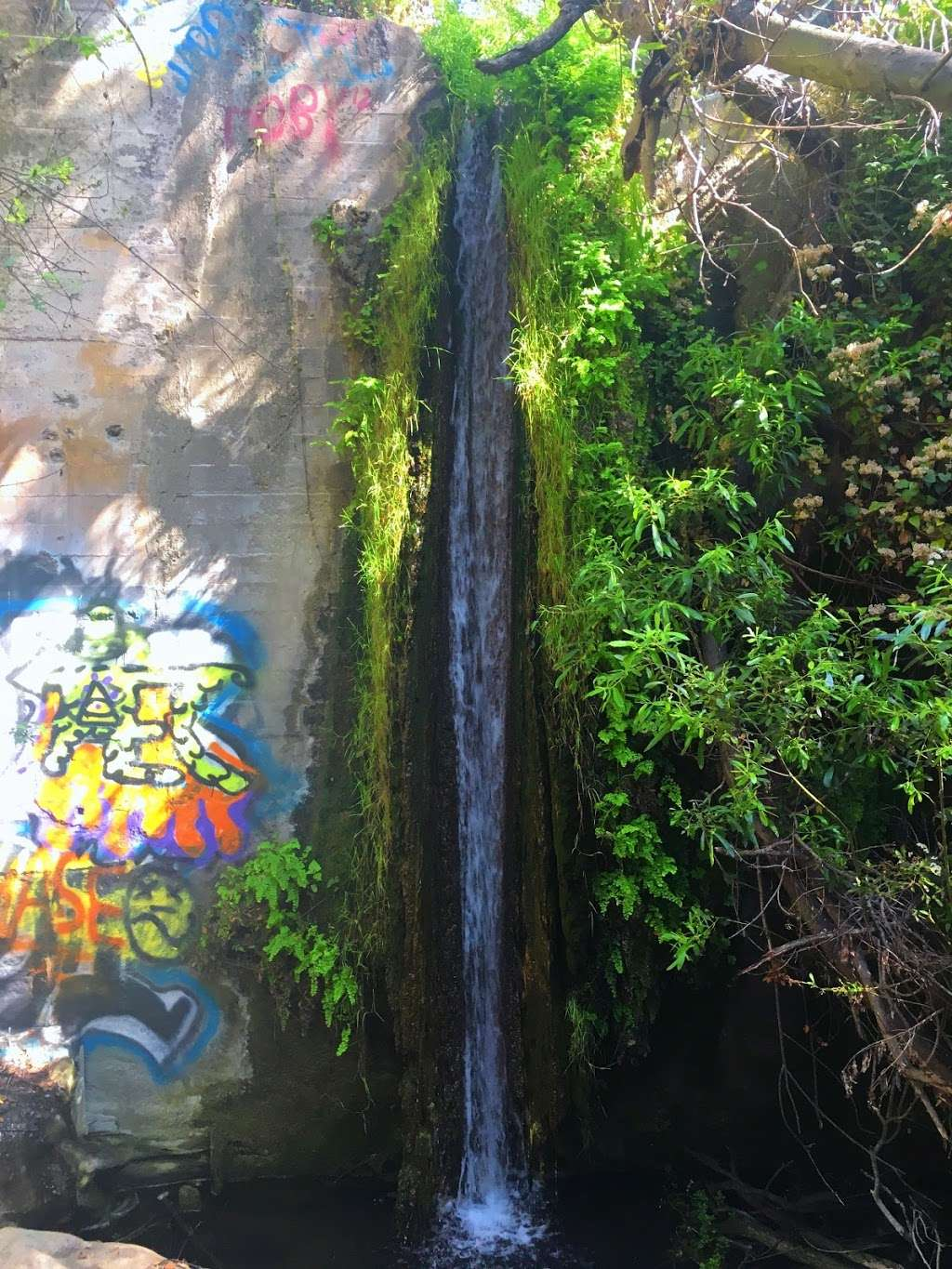 Hidden Waterfall - park  | Photo 1 of 1 | Address: Rustic Canyon Trail, Pacific Palisades, CA 90272, USA