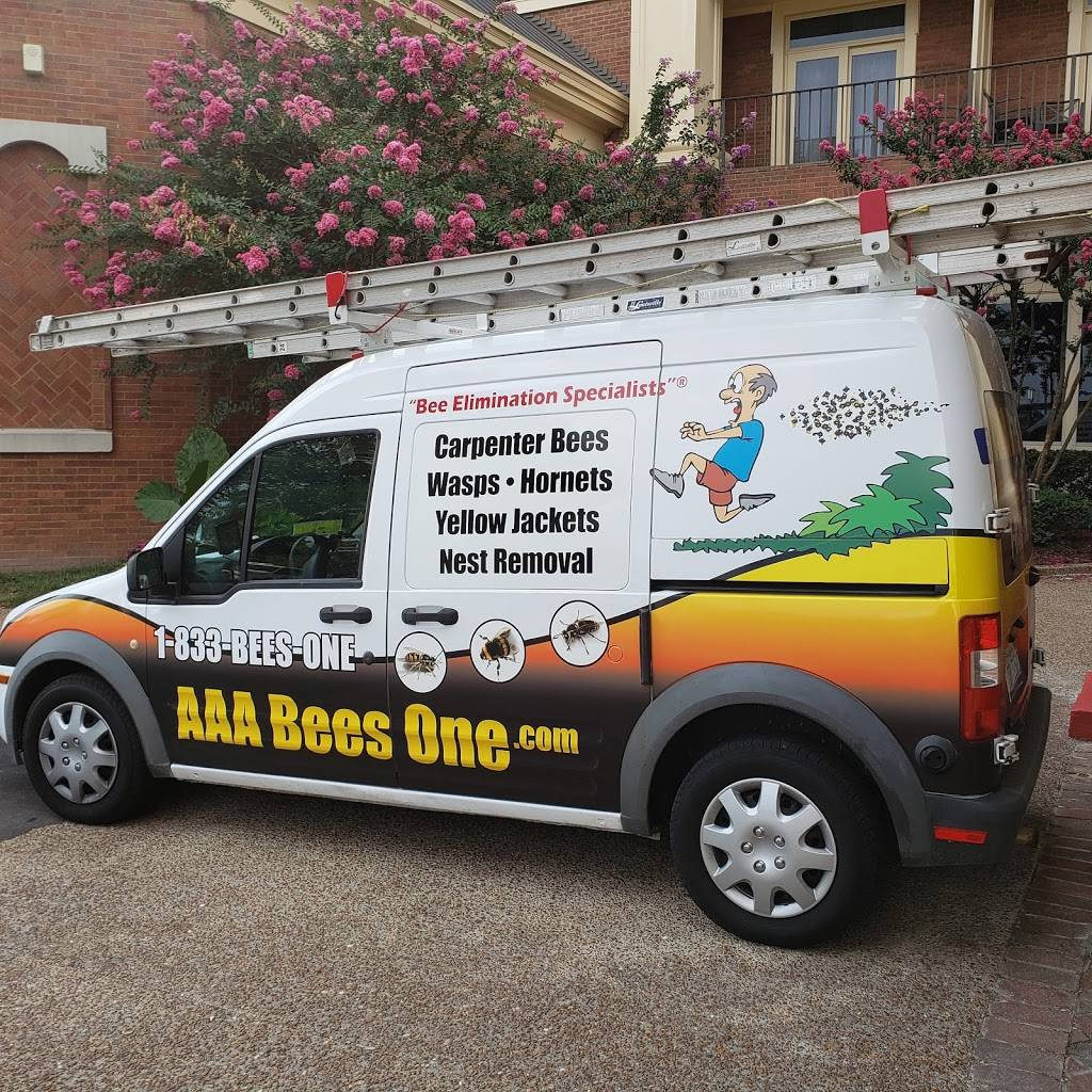 AAA Bees One, Carpenter Bee Service, Hornets and Wasp Nest Remov - home goods store  | Photo 3 of 10 | Address: 1905 34th Ave N, Birmingham, AL 35207, USA | Phone: (205) 510-7241