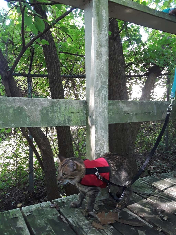 Wheelabrator Wildlife Refuge and Butterfly Garden - park  | Photo 4 of 8 | Address: West Deptford, NJ 08093, USA | Phone: (856) 742-1484