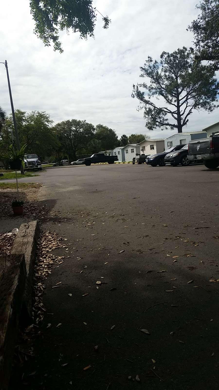 21 PALMS Travel Resort - lodging  | Photo 5 of 10 | Address: 584 State Road 559, Auburndale, FL 33823, USA