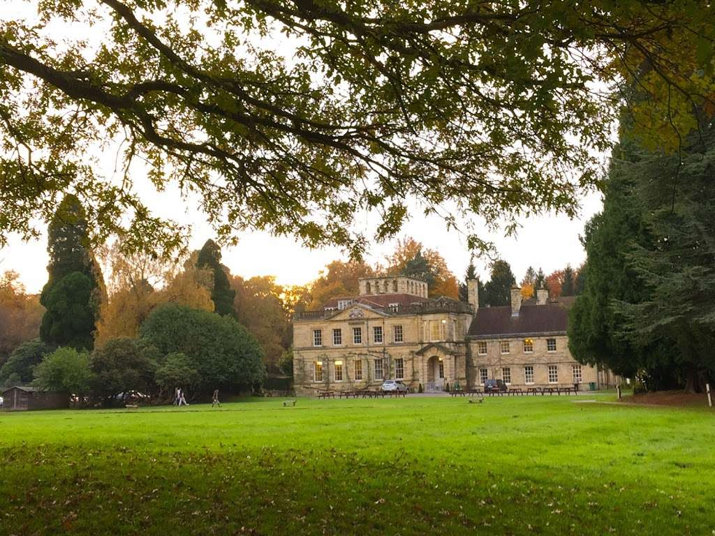 Michael Hall Steiner Waldorf School - school  | Photo 2 of 2 | Address: Kidbrooke Park, Forest Row RH18 5JA, UK | Phone: 01342 822275
