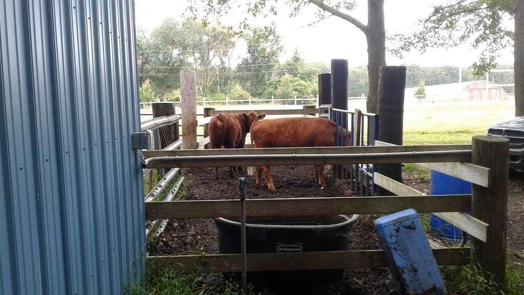 OakGlen Farms Beef & Pork - store  | Photo 2 of 2 | Address: 555 Oak Glen Rd, Howell, NJ 07731, USA