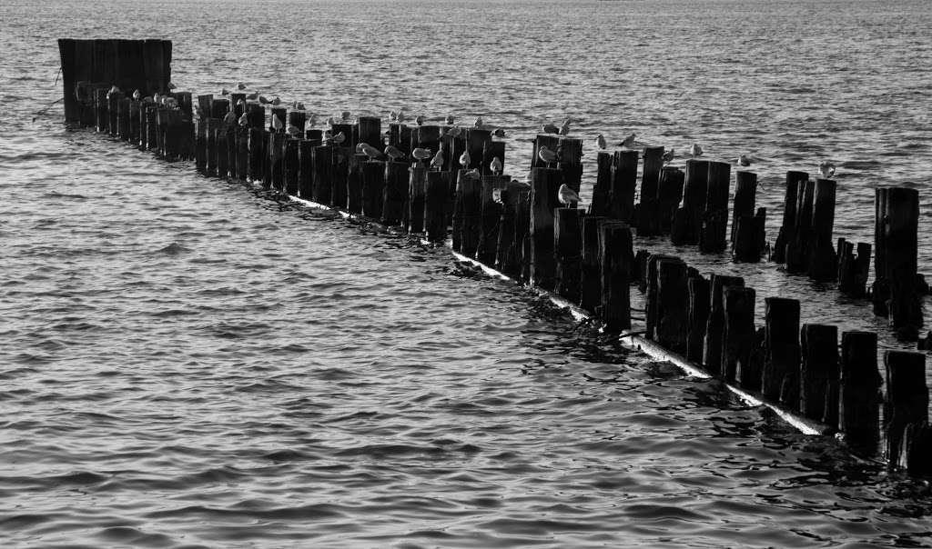 New York, Pier, Riverside Park - park  | Photo 5 of 10 | Address: New York, NY 10069, USA