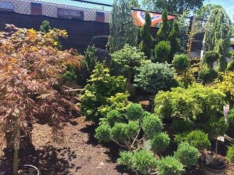 Lisena Garden Center & Nursery - store    Photo 3 of 7   Address: 12-5 Cross Bay Blvd, Broad Channel, NY 11693, USA   Phone: (718) 607-5413
