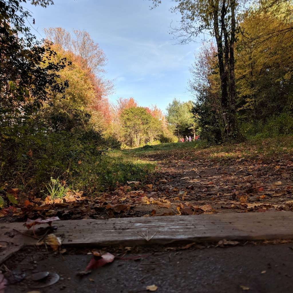 Dacey Community Field - park  | Photo 8 of 10 | Address: Lincoln Street, Franklin, MA 02038, USA | Phone: (508) 520-4909