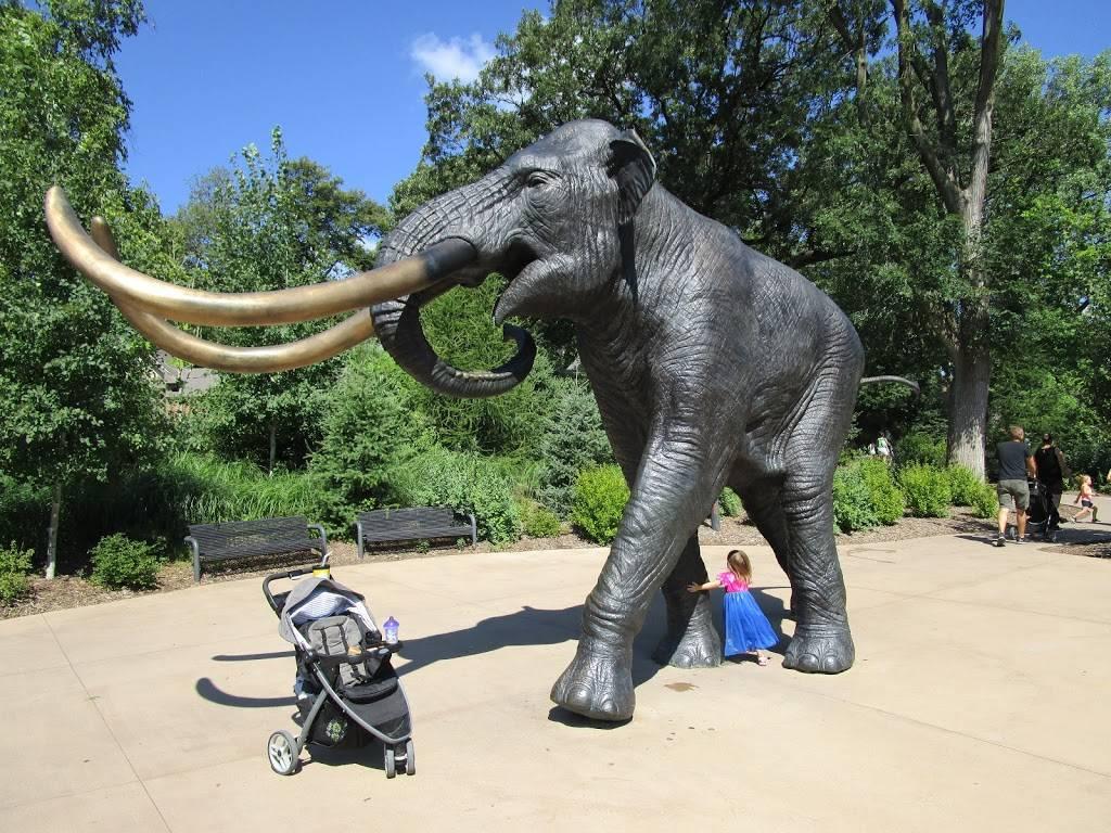 Elephant Amphitheater - zoo    Photo 8 of 10   Address: 3901-, 3999 S River Dr, Omaha, NE 68108, USA   Phone: (402) 733-8400