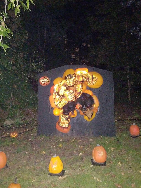 The Rise Of Jack O Lanterns - museum  | Photo 5 of 10 | Address: 555 Park Plaza Dr, Secaucus, NJ 07094, USA | Phone: (516) 252-3392